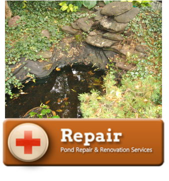 Water Feature / Pond Repair Services In Rochester, Buffalo & Western (NY)-Acorn