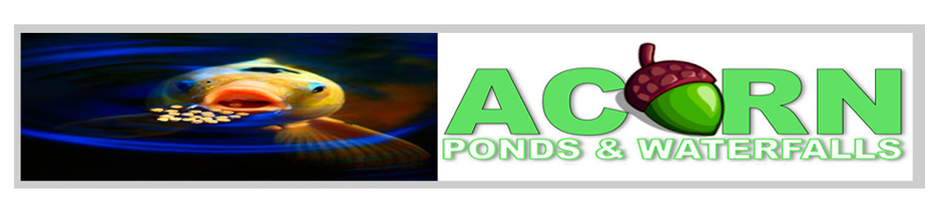 Pond Services in Greece, Pittsford, Webster & Monroe County New York (NY)-Acorn Ponds